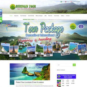 beringintour.com
